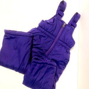 Pink Platinum Purple Snowsuit